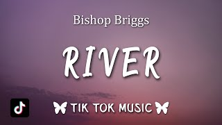 Bishop Briggs - River (Lyrics) Like a river, like a river, TikTok Song