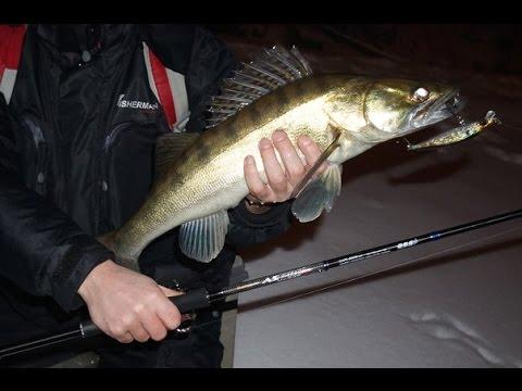 Рыбалка. Воблеры для ловли ночного судака. TIP 24. - YouTube