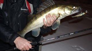 Рибалка. Воблери для нічного лову судака. TIP 24.