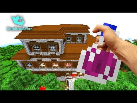 Realistic Minecraft in Real Life Hand vs Zombie Villager ...