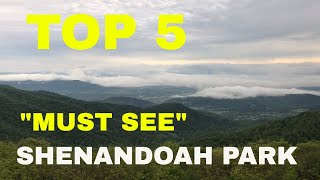 TOP 5 MUST SEE IN SHENANDOAH NATIONAL PARK // WALKED UP ON BLACK BEAR