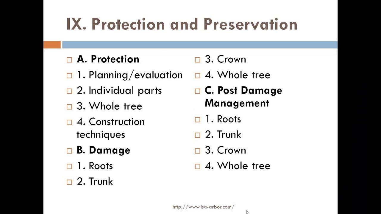 Preparing For The Isa Certified Arborist Exam Youtube