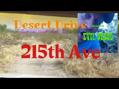 Desert Drive - 16 - 215th Ave.
