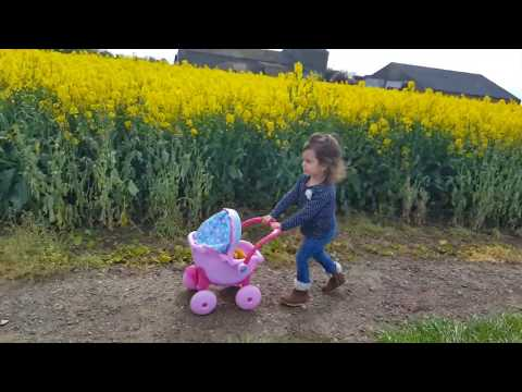 Thumbnail: Teddy Doll Pushchair / Playing with baby doll in the Flower Land