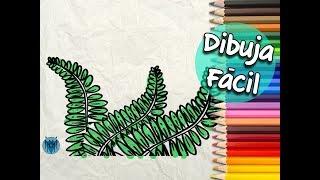Cómo dibujar un Helecho - How to draw a Fern | Dibustrador