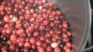 Cranberry jelly-Jam 12-2-11
