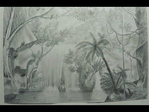 Dibujo De Un Paisaje De La Selva Tropical Uikeloop