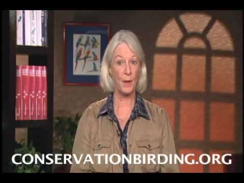 Actress Jane Alexander  Go Conservation Birding!