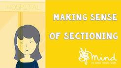 Making sense of sectioning
