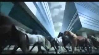 Horse Tribute 3 - Serenata *****EPIC*****