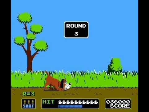 Duck Hunt (Homework II for General)