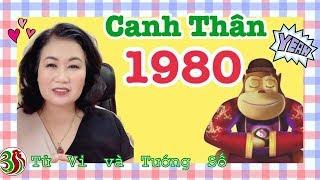 Canh Thân 1980  - Thạch Lựu Mộc năm 2019 | Tử Vi Và Tướng Số