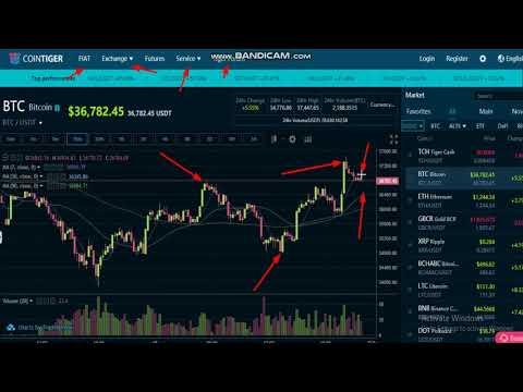 Bitcoin Exchange   COINTIGER   -Crypto Trading Platform -Cryptocurrency Exchange -Crypto Exchanges
