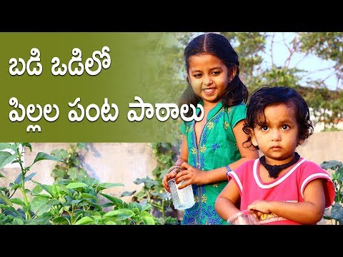 బడి పంట-Lessons from a School Garden