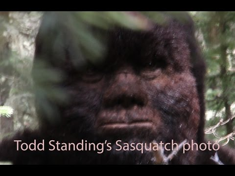 Bigfoot North Vlog from Todd Standing.  Discussing various Sasquatch topics
