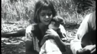 ''El Megano'' (Cuba, 1955) - Filme dirigido por Julio García Espinosa.