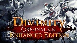 Divinity: Original Sin Enhanced Edition. Первый взгляд