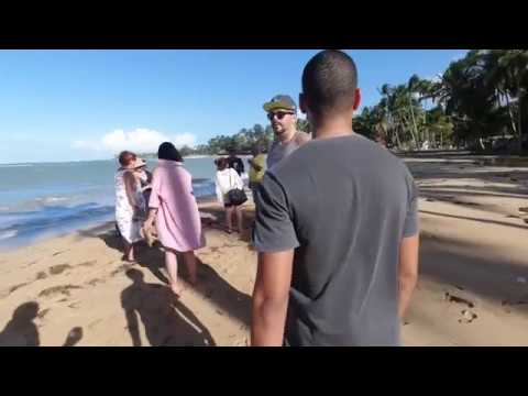 Dominican Republic  10/25-11/04/2019 - Highlight