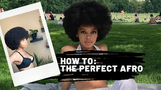 HOW TO: The Perfect Afro | CLEOPATRA LEE