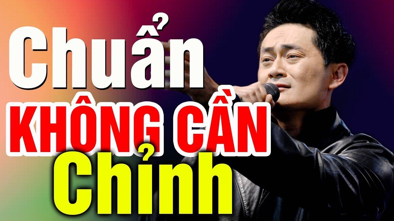 Nụ Hồng Mong Manh – LÂM NHẬT TIẾN Hát Nhạc Hoa Lời Việt Hay Quá – Chuẩn Không Cần Chỉnh Luôn