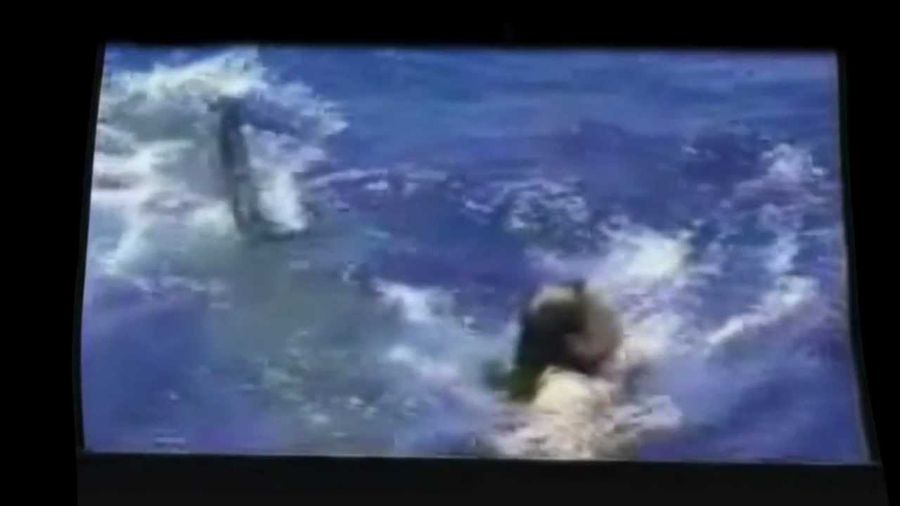 Shark Attack Real Footage. Shark attack caught on tape ...