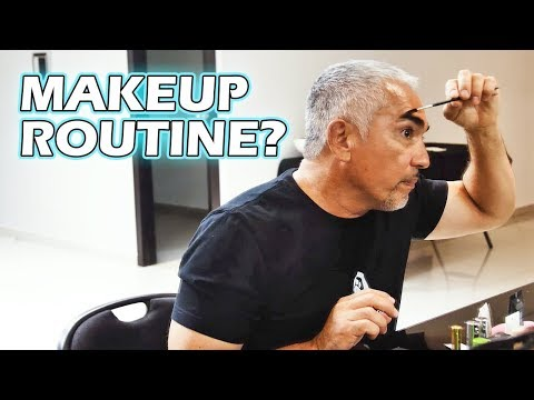 What Is Cesar Millan Like Behind The Scenes? (Latin America Tour)