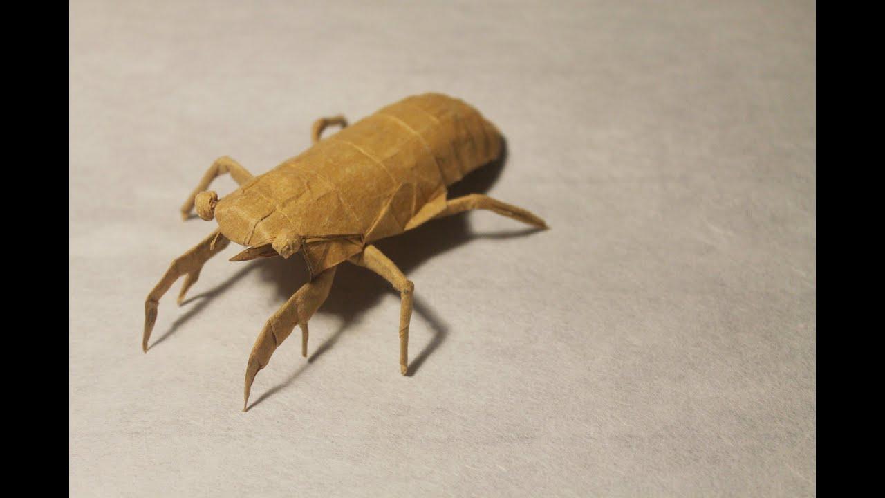 cicada nymph - photo #39