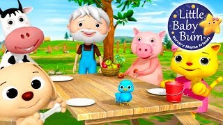 Nursery Rhyme Videos! | Food Songs! | Compilation from LittleBabyBum! | Live Stream!