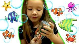 Как сделать декортаивный аквариум своими руками | Поделки для детей | Детский канал Умитайм thumbnail
