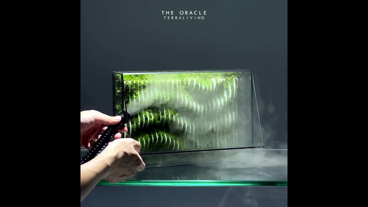 How to make a living parametric moss wall terrarium with fog, The Oracle by TerraLiving