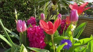 Wor Garden - Easter Weekend