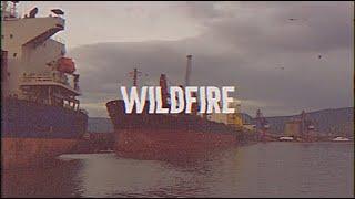 Gambar cover Wildfire (Feat. Shubh Saran)- Lyric Video