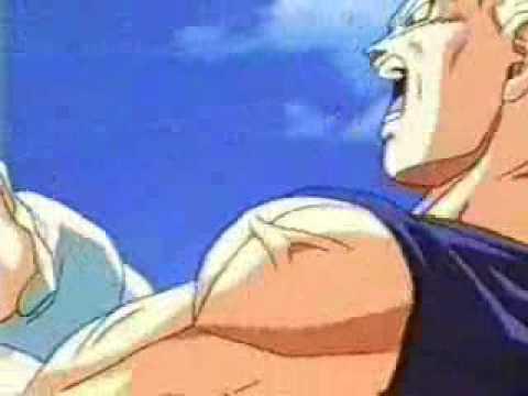 Vegeta's Pride - I Stand Alone!