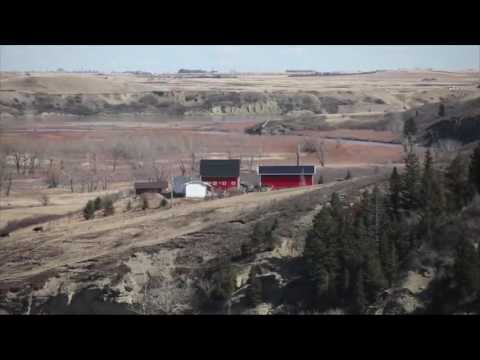 Alberta's historic Oxley Ranch being conserved
