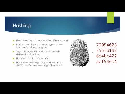 Module 5: What is hashing?
