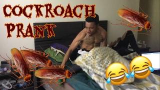 COCKROACH PRANK ON BOYFRIEND!!! |Lolo & Free Team|