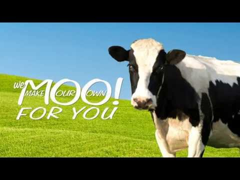 We MOO For You | Stewart's Shops