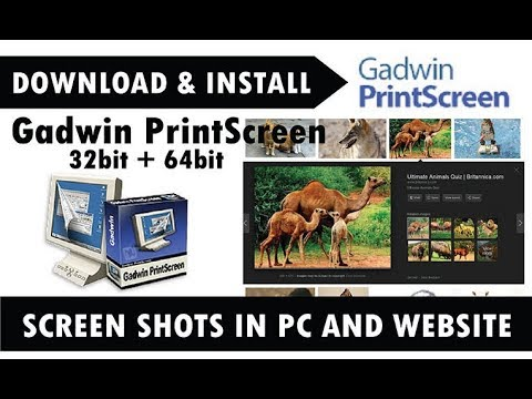 Gadwin PrintScreen: How to take screenshot from pc and websites?