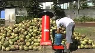 Triturador de Coco Verde