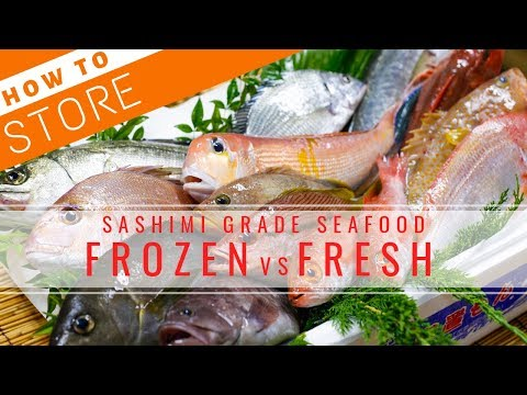 How To Store Sashimi Grade Seafood - Frozen Vs Fresh【Sushi Chef Eye View】