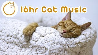 EXTRA LONG Cat Relaxation Music! New 2019