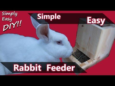 DIY Rabbit Feeder