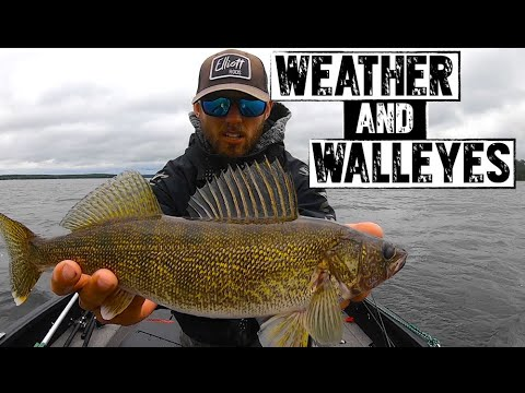 How Does Weather Affect Walleye Fishing