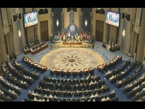 Political Specials - Arab League Summit 2014