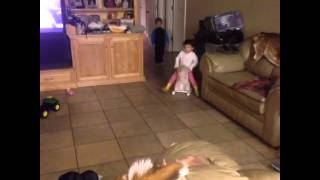 Rocking Horse Fail Vine
