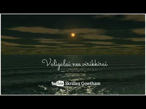 tamil_love_feel_whats_app_status_video-💞suththuthey-suthuthey-boomi💞paiyaa-movie💞#skrillexgowtham