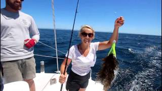 Ep. 6 Sailing East & South Coast Tasmania and Surfing remote waves (Sail Surf Roam)