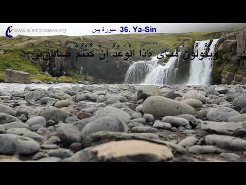 Surah Yasin- One of the World's Best Quran Recitation in 50+ Languages