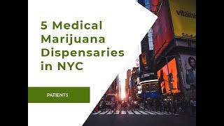 Get to Know the 5 Medical Marijuana Dispensaries in NYC