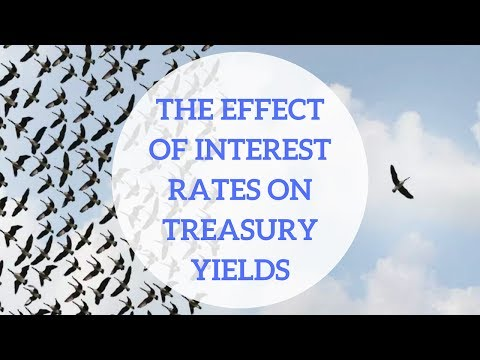 The Effect of Interest Rates on The Treasury Yield